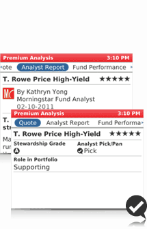 Image of stock analysis screen of Morningstar BlackBerry application